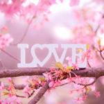 恋に効く厳選サイトと書籍4選